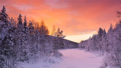 rovaniemi wallpaper winter week on top of the world 6 days 5 nights nordic