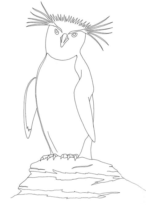 macaroni penguin coloring page macaroni penguin free coloring pages