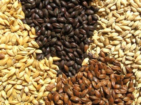 cucinare i cereali i cereali integrali come cucinarli correttamente un