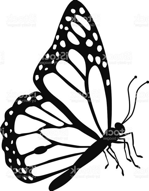 outline rubber sts butterfly clipart side pencil and in color butterfly