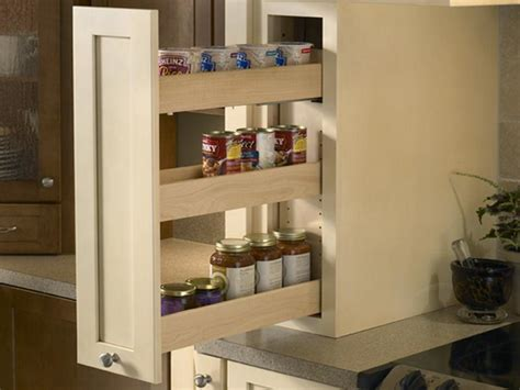 Kitchen Cabinet Pull Out Spice Rack by Bloombety Cabinet Pull Out Hangng Spice Rack Cabinet