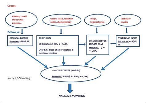 shaking and vomiting recent advances in pharmacotherapy of chemotherapy induced nausea and vomiting