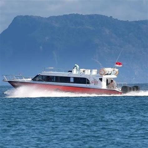 fast boat to nusa lembongan fast boat to nusa lembongan bobo tour activities