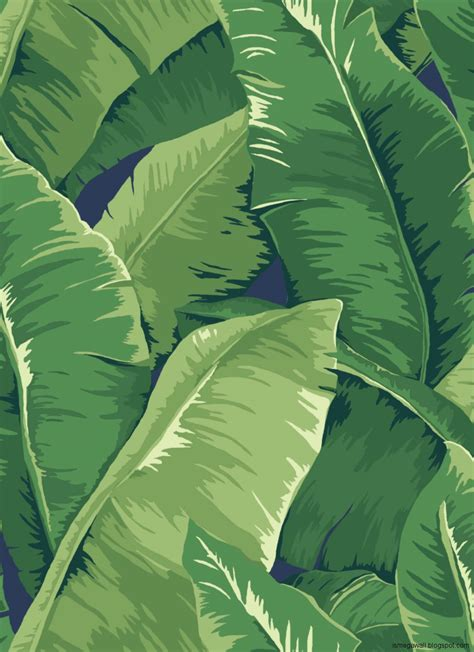 Bananas Leaf Wallpaper | wallpaper hd banana leaf in sea mega wallpapers