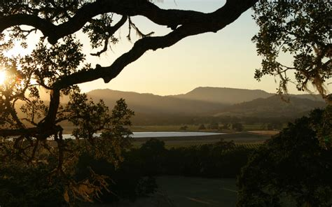 The Weekend Link by The Weekend Link List Aug 4 Land Trust Of Napa County