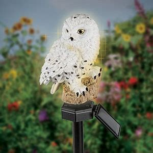 12 Best Images About For The Garden On Pinterest Glow Solar Owl Lights