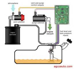 Fuel System Evaporator Detailed Engine Diagram Get Free Image About Wiring Diagram