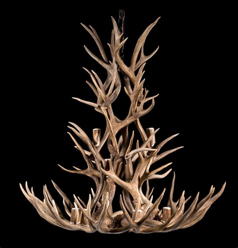 hton bay 6 light chandelier hton bay antler chandelier hton bay 5 light antler