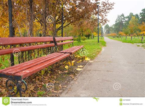 bench in the park bench in the park royalty free stock images image 34799069