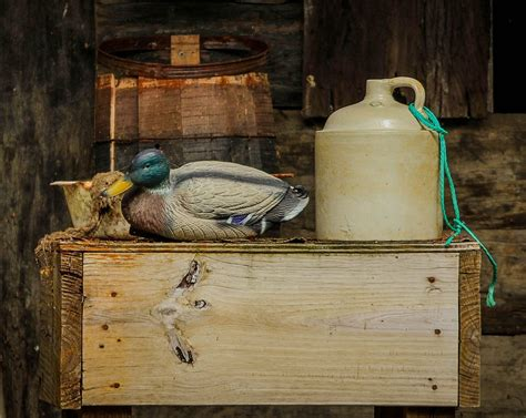 still life with duck home office free photo still life duck decoy moonshine free image