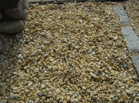 Places To Buy Gravel Irwin Irwin Pet Friendly Yard Sand