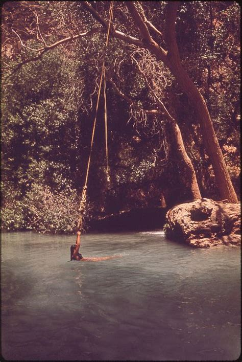 swing swing swing on a summer day lyrics 125 best images about rope swings on pinterest lakes