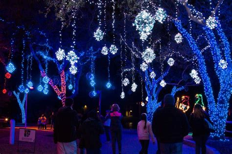 moody gardens festival of lights 2016 in galveston tx
