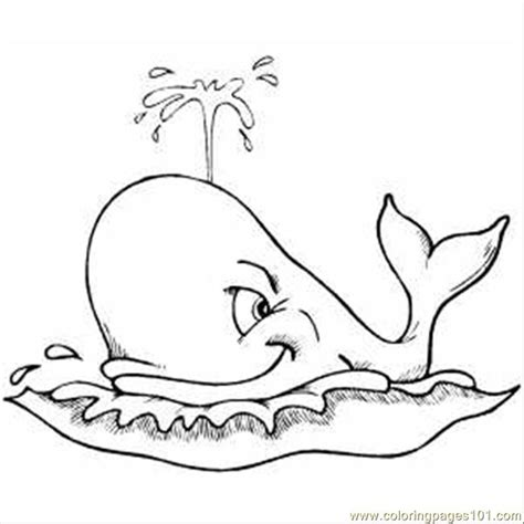 coloring pages spouting whale animals gt whale free