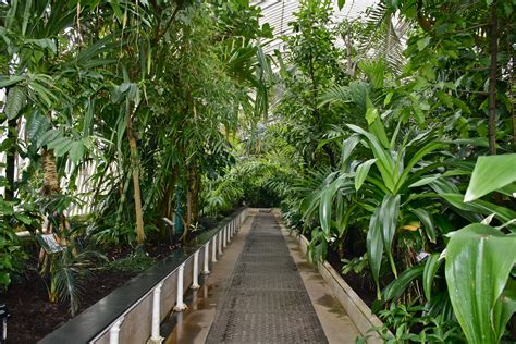 The Palm House Kew London Anthropogen Kew Botanical Gardens