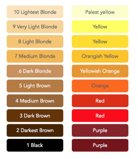 hair color levels bleaching hair color level chart image of hair salon and