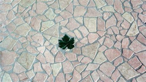 palladiana pavimento pavimenti palladiana pavimento da interno tipologie