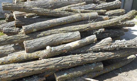 troncos decorados troncos secos decorados diseos originales con madera