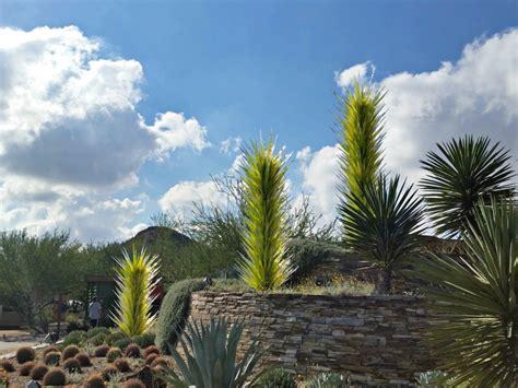 desert botanic garden desert botanical garden family activities in