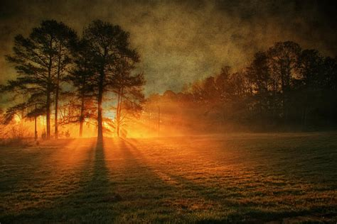 new images of day of a new day photograph by corley