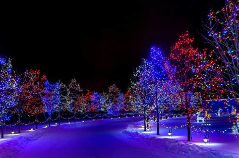 winter holiday merry christmas happy new year nature snow