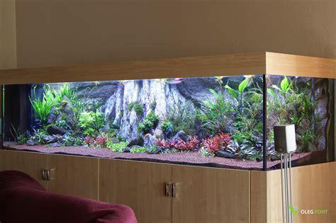 Nur Home Decor Faszination Aquascaping Kundenprojekt 2 5m Diskusbecken
