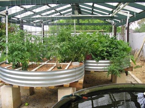 Backyard Aquaponics Australia by 17 Best Images About Sustainable Farming Gardening