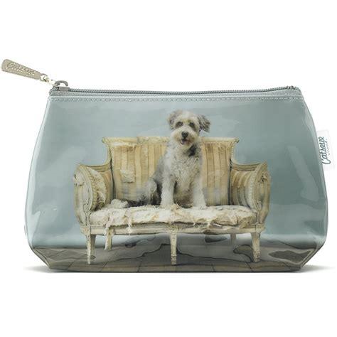 small dog sofa catseye sofa dog small bag plushpaws co uk