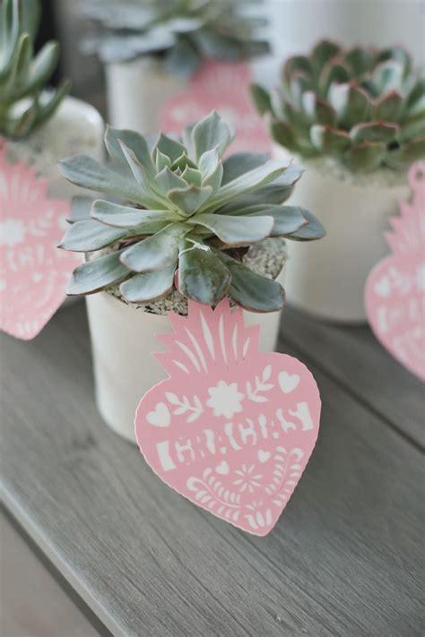Best 25  Succulent wedding favors ideas on Pinterest