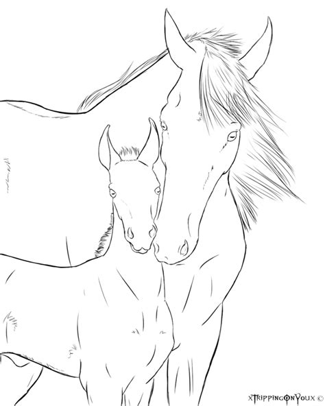 coloring pages of horse and foal mare and foal coloring pages coloring pages