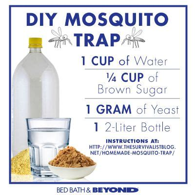 diy mosquito trap 9 best images about mosquito trap dyi solution on