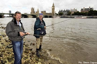 thames river fishing teeming with fish thames is cleanest for two centuries