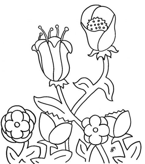 coloring pages of flowers for preschool printable flower coloring pages for preschool flower