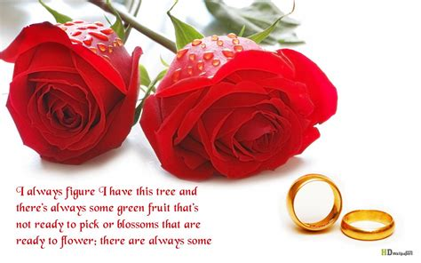 flower wallpaper with love quotes flowers quotes wallpapers beautiful flowers wallpapers