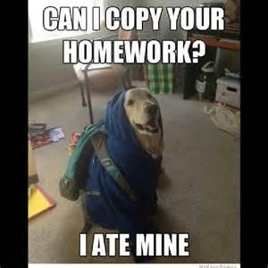Funny Pun Memes - dog pun meme