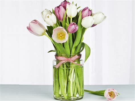 tulipano fiore significato significato dei fiori tulipano fiori idea immagine