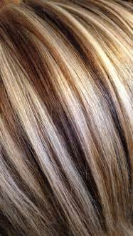 foils hair dark brown hairs