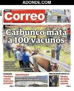 Diario El Correo Noticias De Pasco | diario correo de pasco