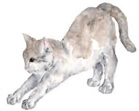water color cat thimble sparrow watercolor cat prints and original