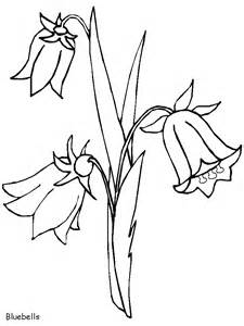 bluebells flowers coloring pages amp coloring book