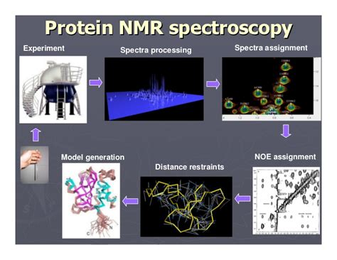 protein nmr humans aliens and e harmony or why there is no such thing