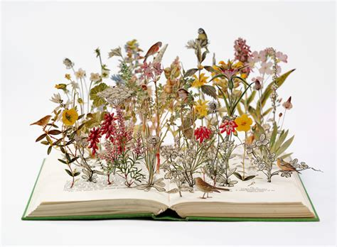nature books bookmarks su blackwell don t take pictures