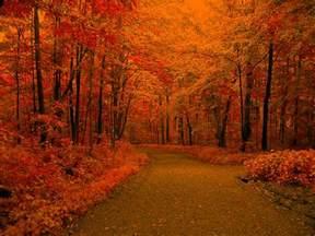 fall backgrounds 18172 1200x900 px hdwallsource com