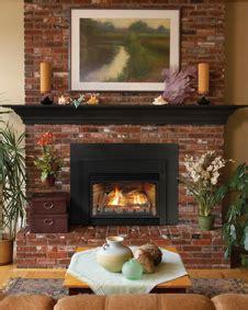 gas inserts appalachian chimney serviceappalachian