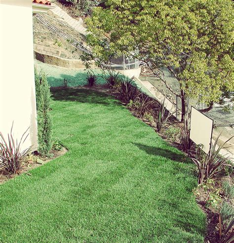 top 28 how to stop erosion on a sloped yard best 25