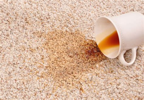 spilled coffee on rug how to remove a coffee stain from carpet