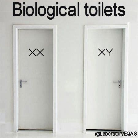 clever bathroom signs biological toilets chromosomes all wall stickers should