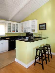 inlaw suite house in suite kitchen transitional