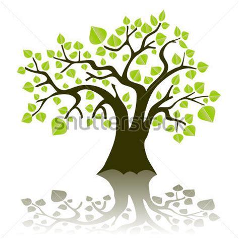 alberi clipart verde stilizzato illustrazione vettoriale ad albero con