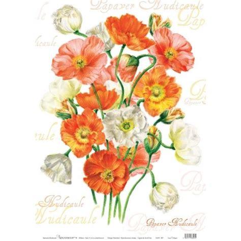 carta decoupage fiori 17 migliori idee su carta per decoupage su